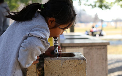 The Toxic Metal Lead in Drinking Water